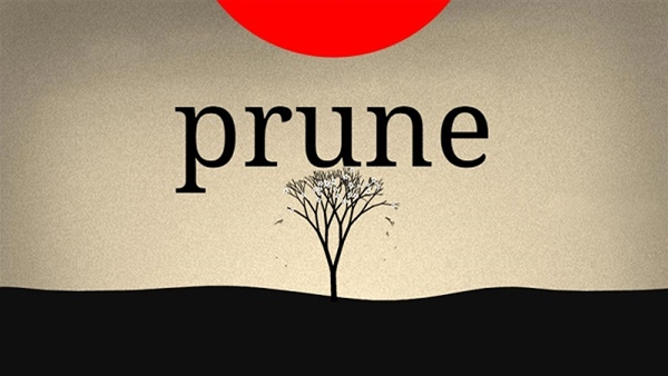 Prune Android APK